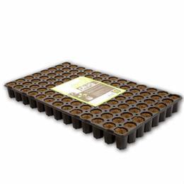 eazy-plug-anzuchtbloecke-tray-rund-gross-c-104-stk